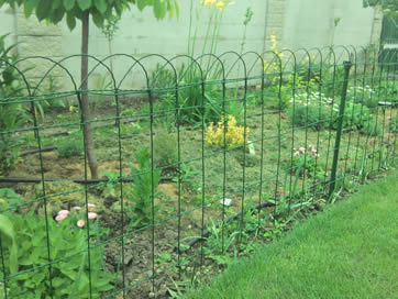 Green Garden Fences With Several Dark Green Support Posts Separate Plants  And Flowers From Lawns.