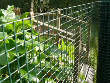 Environment Friendly Plastic Garden Border Fence