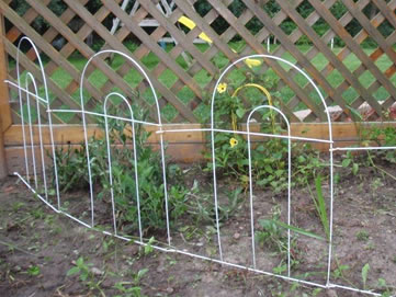 Four pieces of white folding fence link together to protect several short green plants.